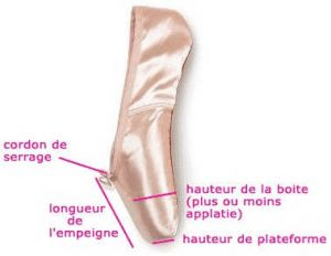 differentes_parties_d_une_pointe_vue_de_profil